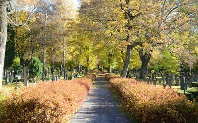 Höst på Norra begravningsplatsen
