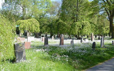 Nu blommar kyrkogården