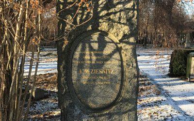 Sten nr 624 – Karl Magnus Ziesnitz
